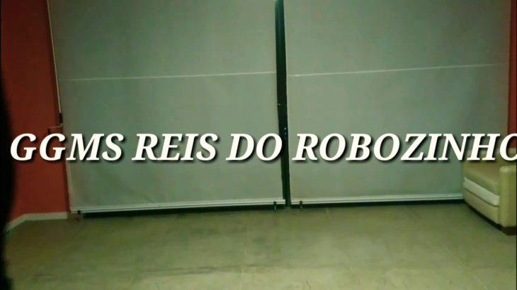 Liberdade (Priscila Alcântara)GGMS REIS DO ROBOZINHO/Dubstep dance/Popping animation
