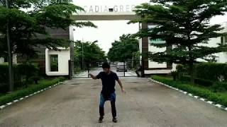 """( dubstep + house) in my ( unique dance style) """"wavestick"""" dance cover by pintu pandit"""