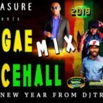 2019 REGGAE DANCEHALL MIX: CLEAN 🔥 HAPPY NEW YEAR TO ALL MUSIC LOVERS FROM DJ TREASURE 18764807131
