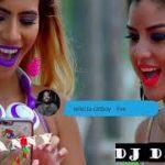 Reggae Videos Mixes Dj Danny