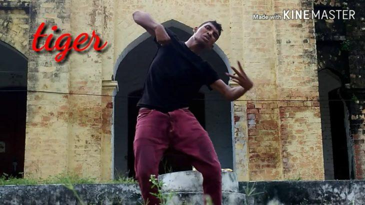 Bekhayali-kabir singh _ TIGER AKA/ krump dance