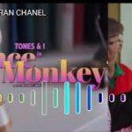 TONE AND I Dance Monkey Versi Reggae mantul