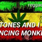Tones & I (Dancing Monkey) – reggae cong